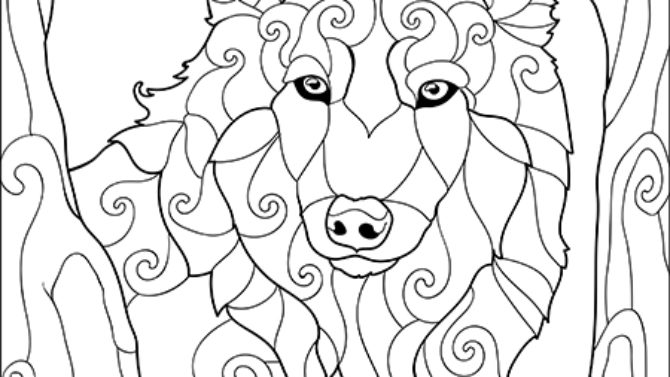 Fantastic Animals Adults Coloring Book